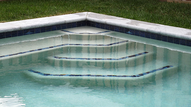 435_pet-steps-from-shed-corner-zoomedin-ed-cd Custom Swimming Pool Design in Lewes, Delaware - Carter Aquatics